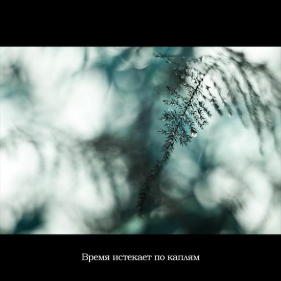 76484632_large_cutatu_v_foto_lp_readmasru_04.jpg